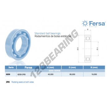6209-2RS-ASFERSA