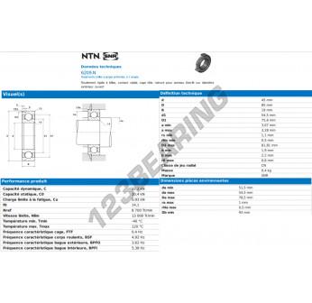 6209-N-C4-NTN