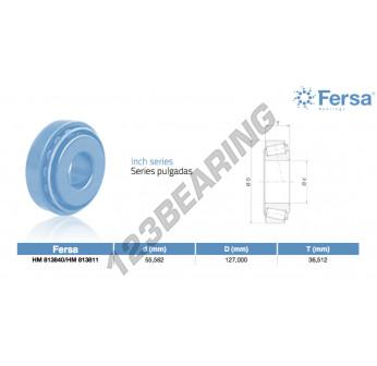 HM813840-HM813811-ASFERSA
